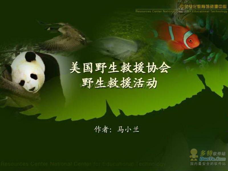【保护动物ppt模板】保护动物ppt模板
