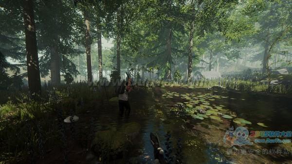 森林,The Forest